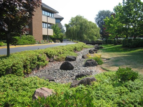 Bioswales to store rainwater in streets and to lower flood risks