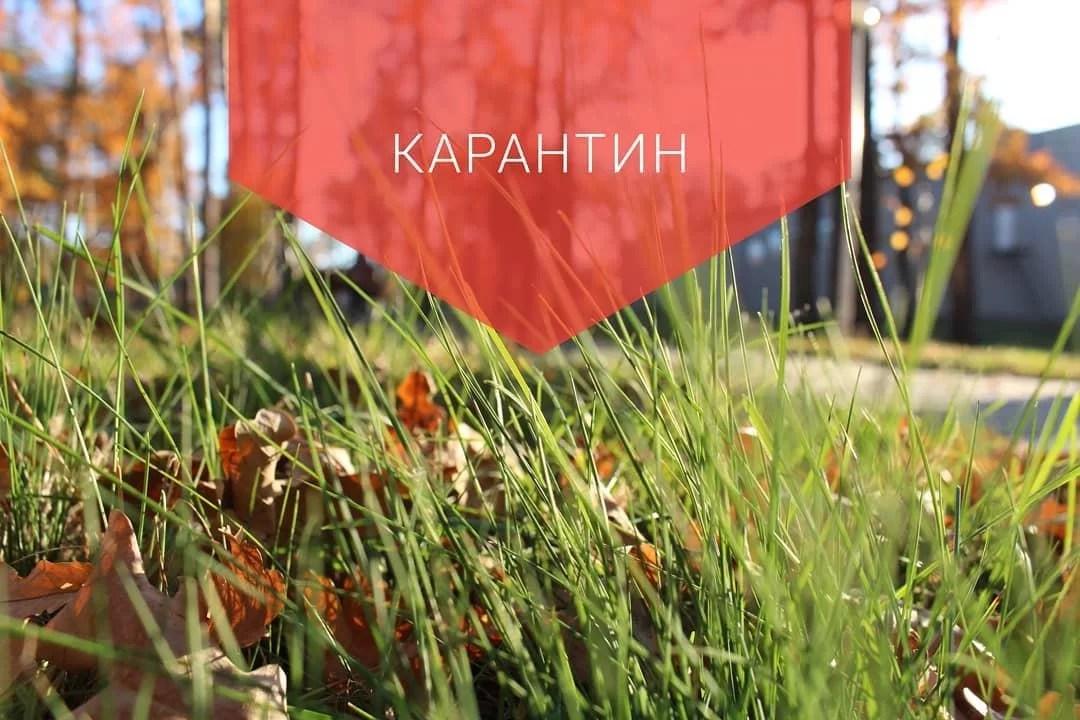 photo_2020-03-27_09-32-45