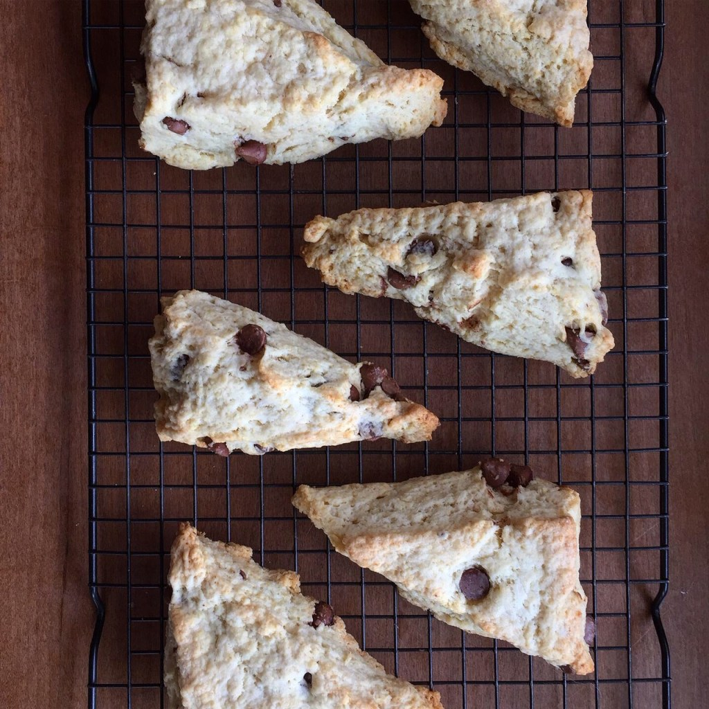 baked chocolate chip scones on a cooling rack
