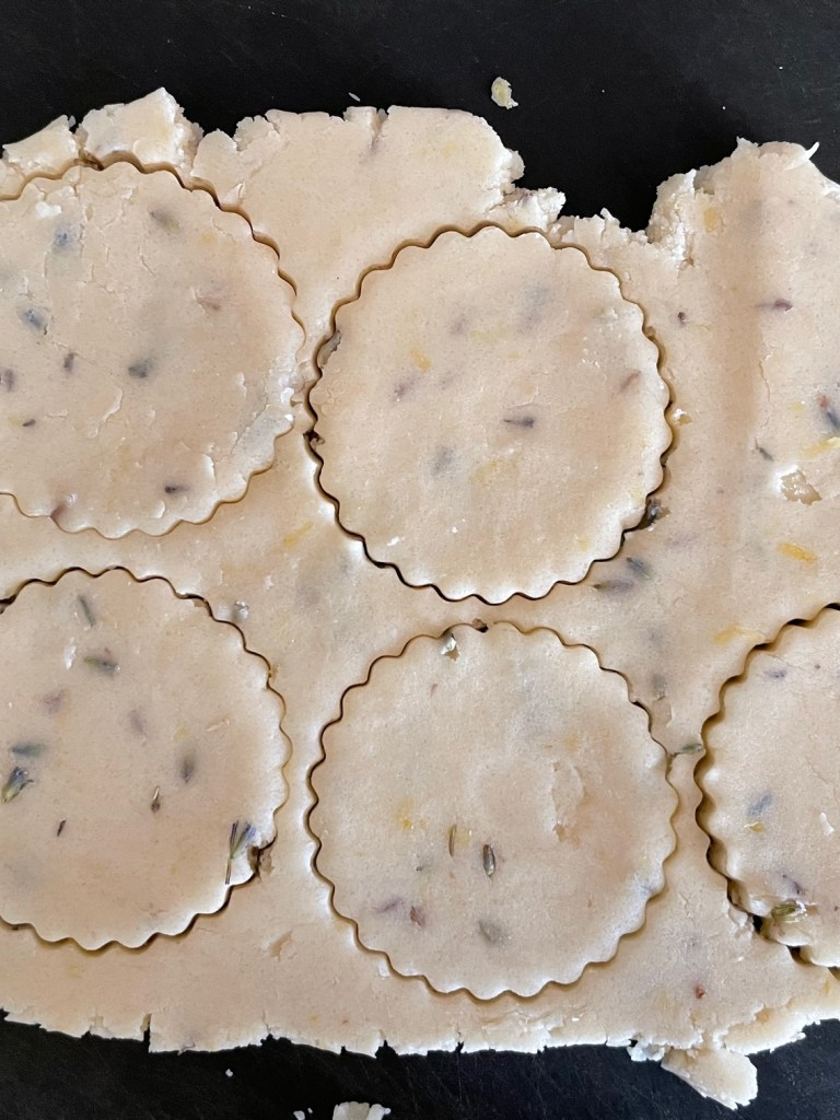 lemon lavender cookie dough that has been rolled and cut out into five fluted circles