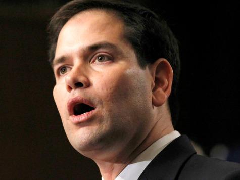 Rubio's dumb face