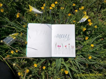 May Bullet journal May flowers in a vase