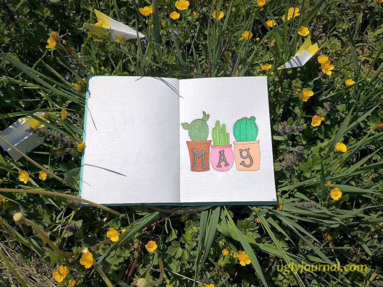 May Bullet journal Cactus pots