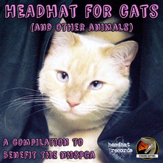 Headhat for Cats (And Other Animals)