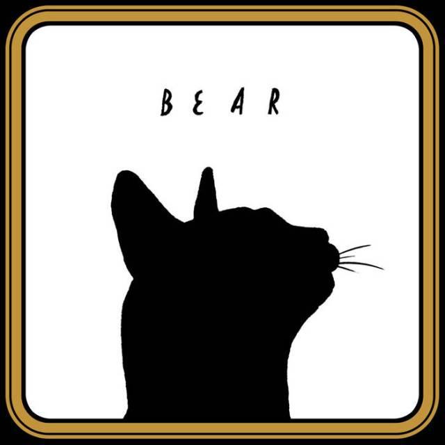 Bi-Polar Bear - Bear