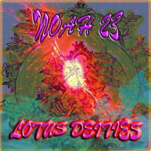 noah23-lotus-deities