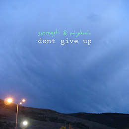 Serengeti & Polyphonic - Dont Give Up