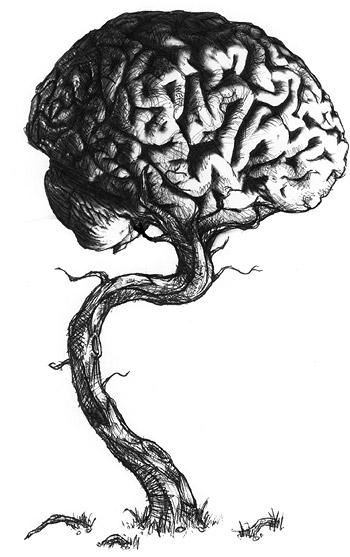 Imaginations Treetrunk