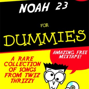 noah-23-for-dummies