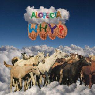 WHY? - Alopecia