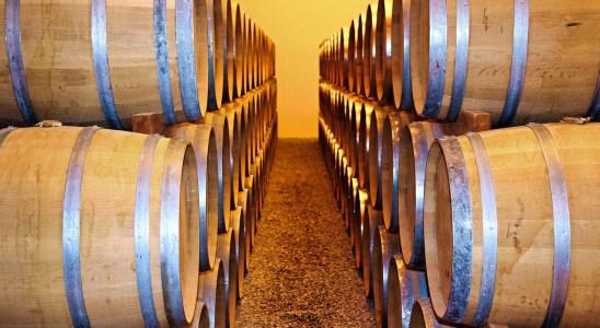 vino, barril, bodega, vinícola, vitivinícola