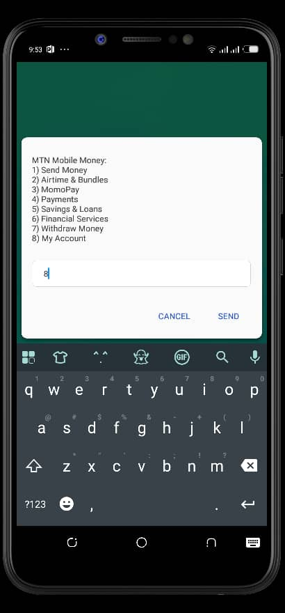 Change Mobile Money Language