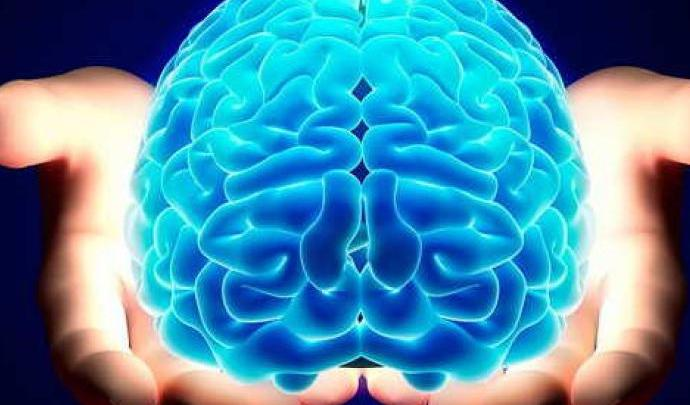 Protesi cervello