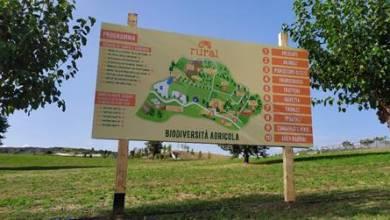 Photo of Si rinnova il successo per il Festival dedicato alla biodiversità agricola