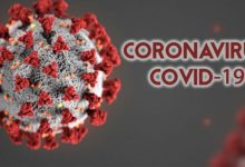 Photo of ITALY'S WORKING ON MONOCLONAL ANTIBODIES FOR COVID-19