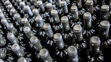 Photo of Tremila bottiglie vendute in sei ore: l'e-commerce rivoluziona la vita di una piccola cantina lombarda