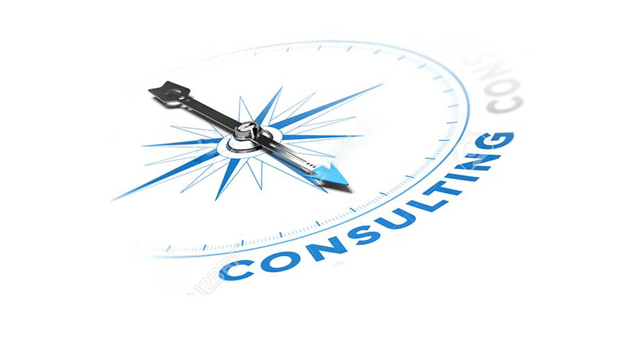 Consultancy and Professional Services