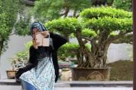 Foto-foto di Japanese Garden