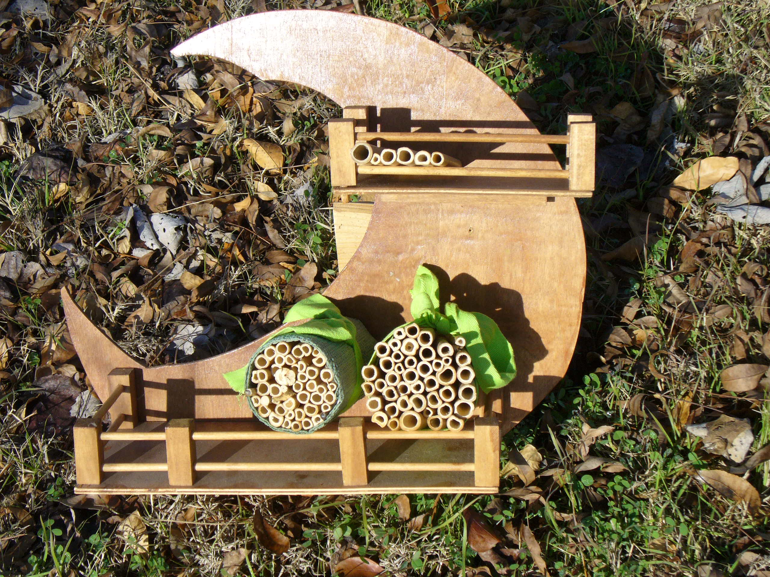 Homes For Native Bees Upper Highland Lakes Nature Center