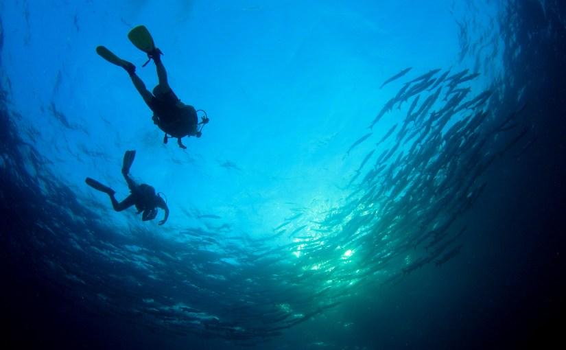 Zeno Pro Diver II