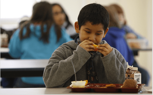 The Bureaucracy Behind School Lunches