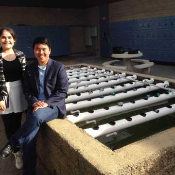 Aquaponics project faces problems with fish death and plant growth, RPM club plans for upgrades