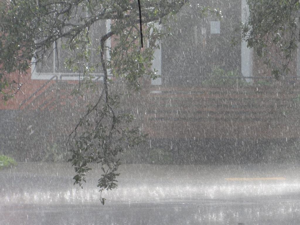 Downpour: a poem