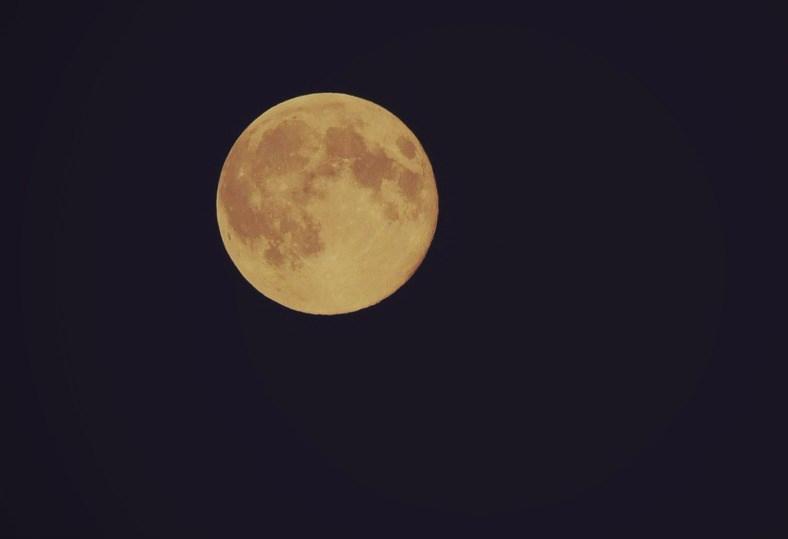 Good Night: a poem