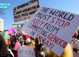 Protests against Ethiopia's attack on Tigray