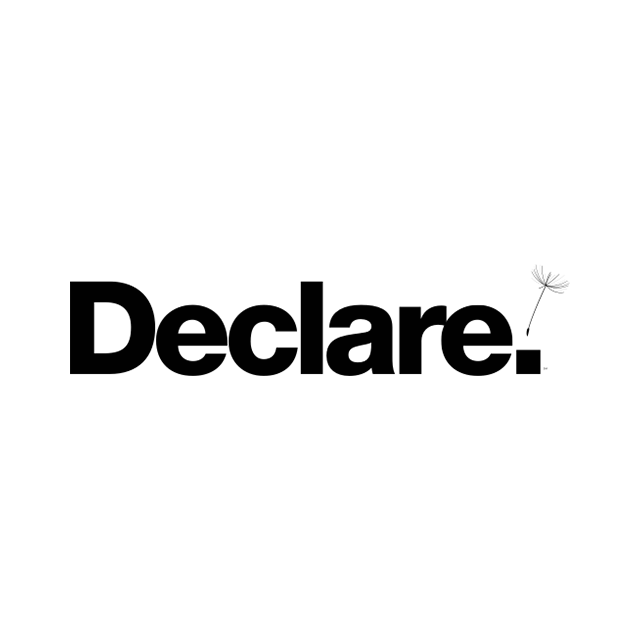 declare_logo-thumb