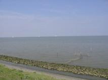afsluitdijk (c)uilentaal