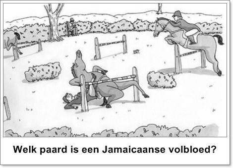 limbopaard