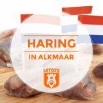De lekkerste haring van Alkmaar eo