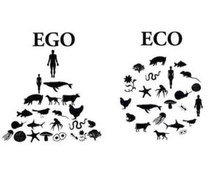 EGO versus ECO uitjebewust