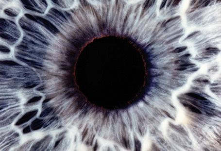 Hipnotizőr