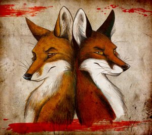 Fox_and_Fox_by_Culpeo_Fox