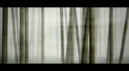 labyrinth_800x600