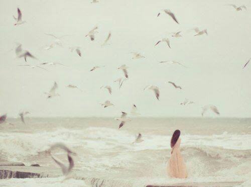 Alina Purcaru költeményei