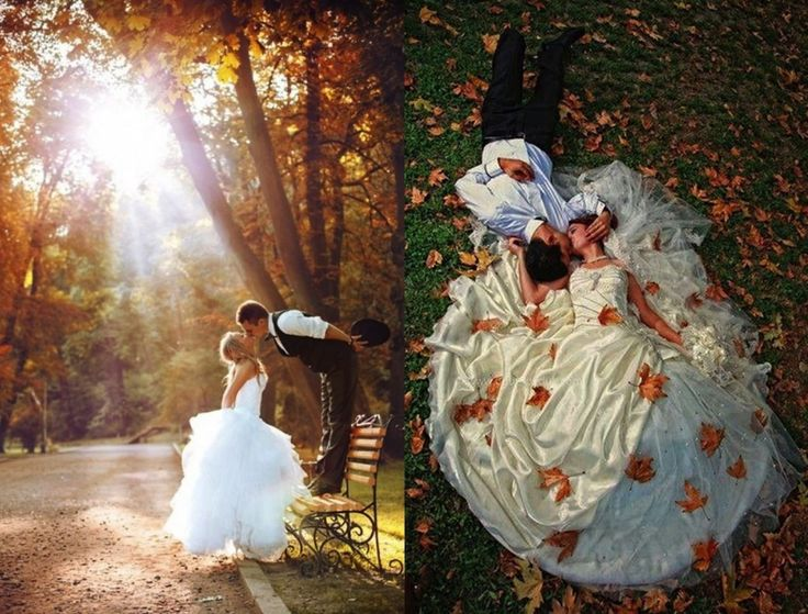 Autumn Blog photos