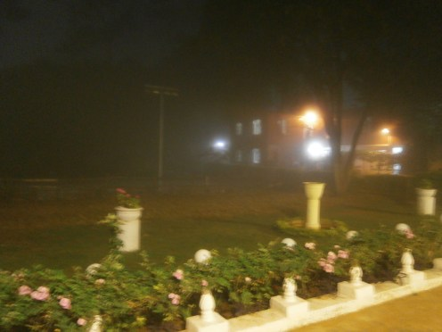 One very foggy evening at S.A.G. Institute (1)