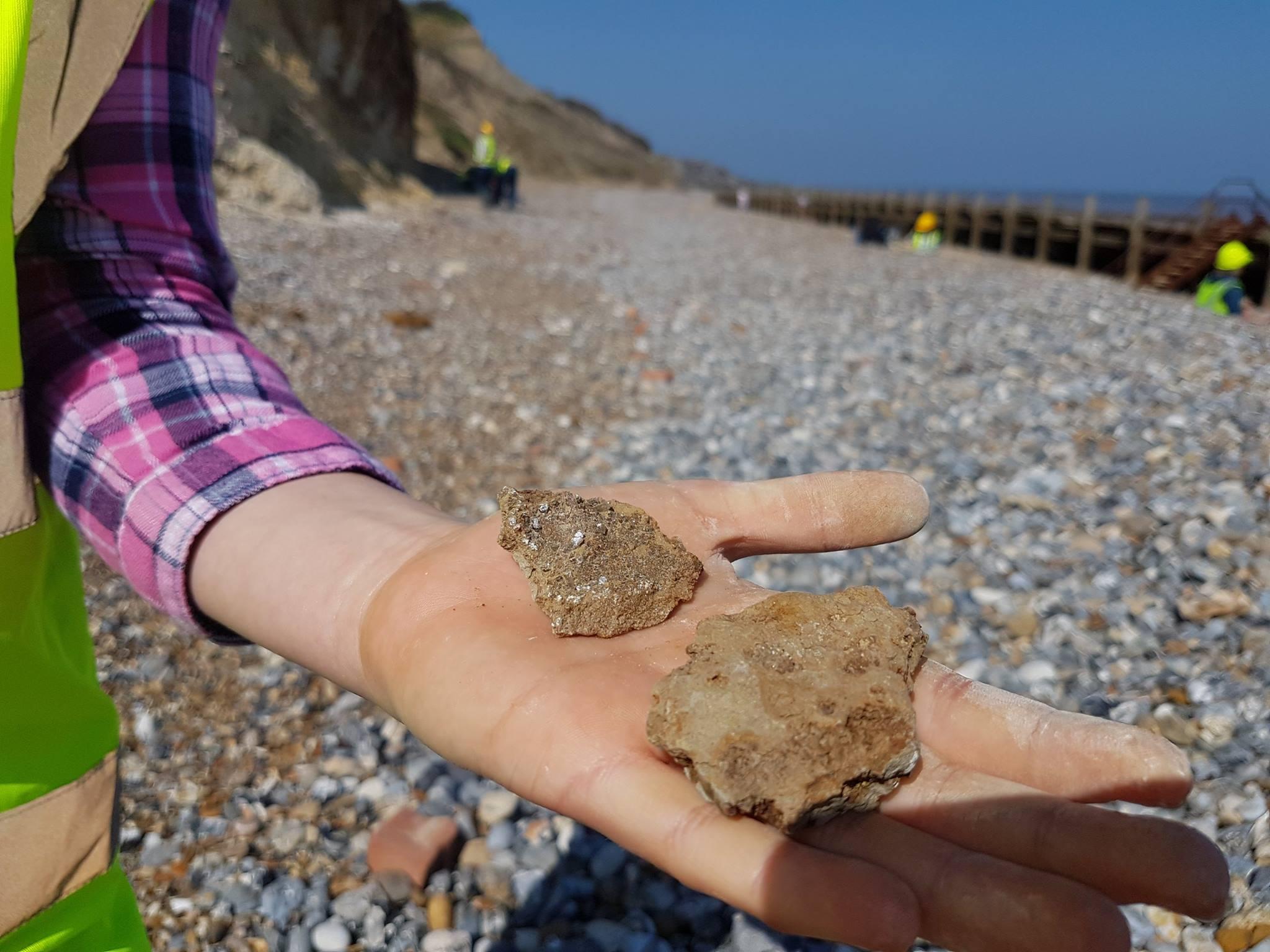 Some nice gypsum crystals found by Poppy Hewit.