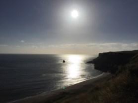 Saltwick Bay 20.08 (1)
