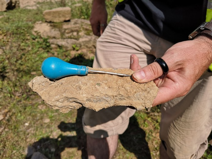 Crinoidal limestone with partial arm attached found by leader, Andrew Eaves