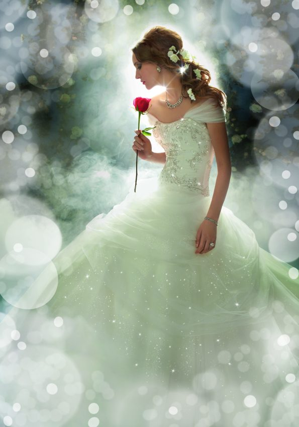 This is Belle, a dress from Alfred Angelo's Disney princess collection.