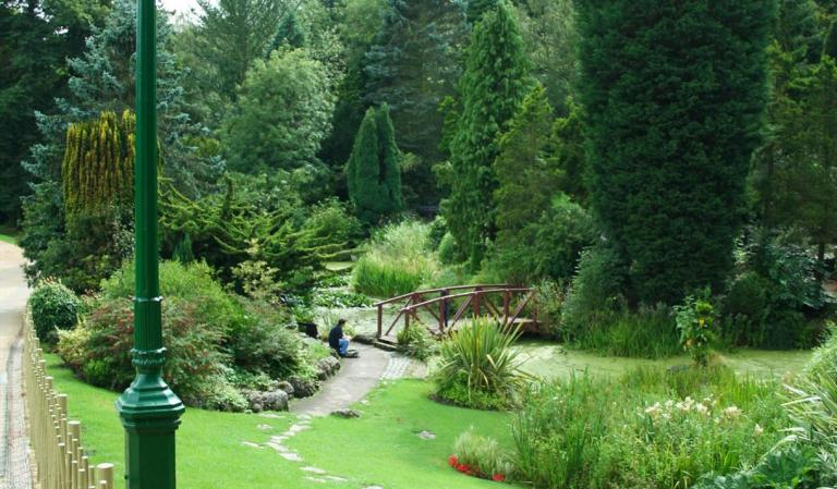 You can also find this lovely spot in the parks in Preston