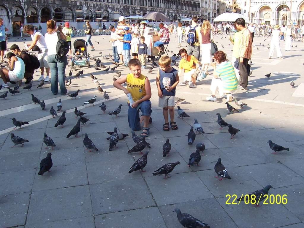 boys feeding pigeons in Venice