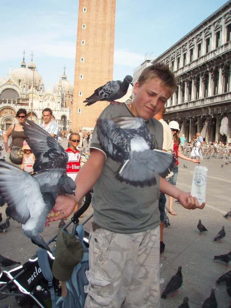 a boy feeding pigeons in Piazza San Marco, Venice