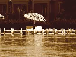 Umbrella Company Contractor Options