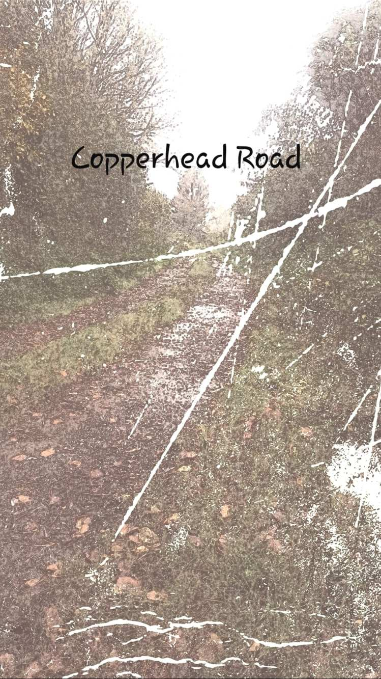 Paul Jupe - Copperhead Road
