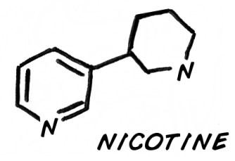 Exp_8_NicotineV2